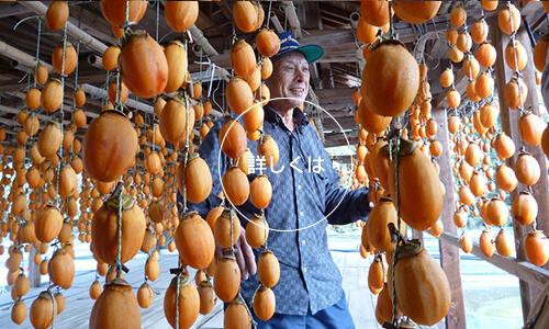 干し柿作り体験イメージ