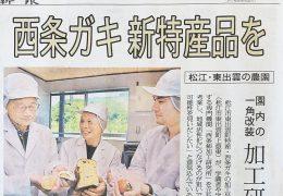 山陰中央新報記事